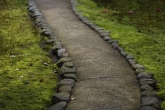 2016 Spring Season Tour Of Kyoto (caz76KOBE) Tags: japan canon landscape temple eos spring kyoto   cherryblossoms  ef100mm  eos6d reikanji ef100mmf28lisusmmacro ef100mmf28lmacroisusm kyototour 2016spring  2016kyoto 2016caz76