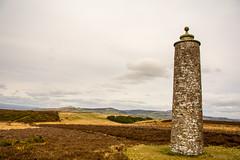 _DSC1246 (GaryE1981) Tags: monument angus mackenzie meridian newtyle