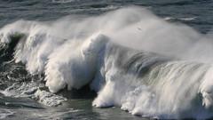 High Surf at the Golden Gate - 7 (fksr) Tags: california bird seagull spray goldengate marincounty marinheadlands breakingwave pointbonita highsurf largewave