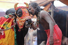 DR1001162 (Dipanjan Roy) Tags: street travel camp india canon colours fair transit kolkata sadhu naga sagar westbengal nagasadhu gangasagar incredibleindia indiansadhu