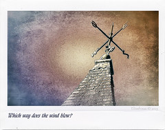Which way does the wind blow? (Elisafox22) Tags: sky texture church weather metal photoshop polaroid angle sony border stormy steeple textures metalwork weathervane formulas postprocessing ipad rooftiles afterlight nex7 tangledfx elisafox22 115picturesin2015 elisaliddell©2015 107weathervane