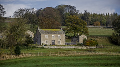 Countryside (Preston Ashton) Tags: uk england sun house tree field sunshine farmhouse countryside bush unitedkingdom farm country sunny