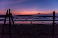 Makar Sankranti II (1/4th) Tags: sea india colour reflection beach silhouette marina sunrise fence dawn twilight sand nikon waves purple shore wintersolstice d750 bluehour nikkor marinabeach chennai tamilnadu sankranti makarsankranti thaipongal uttarayana   2470mmf28g nikon2470mmf28