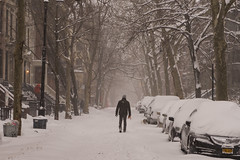Snowstorm Jonas-11 (Diacritical) Tags: snow brooklyn iso800 pattern f45 jonas blizzard 70 2470mmf28 0ev nikond4 nikoncorporation sec secatf45 douglascpalmer2014 january232016 snowstormjonas