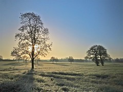 Frost Fields (Deepgreen2009) Tags: morning winter cold grass sunshine weather rural frozen frost shadows clear crisp