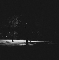 nuit... noir (1) (Ange 29) Tags: trees light bw snow canada window night yard nokia king flurries blinds 1020 township lumia