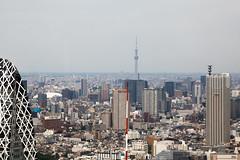 (robef) Tags: japan tokyo asia jp nippon nihon shinjukuku tkyto