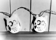 34/366 Owl Lights - 366 Project 2 - 2016 (dorsetpeach) Tags: christmas light monochrome decoration owl 365 2016 366 aphotoadayforayear 366project second365project