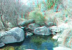 Albuquerque Botanical Gardens (CaptDanger) Tags: gardens 3d albuquerque anaglyph 3dglasses 3dimensional analglyph 3dimages 3dimage eosm 3dphotography albuquerquebotanicalgardens 3dpicture anaglyph3d anaglyphglasses albuquerquenmin3d anaglyphglasseseosmfunredblue cameraeosm
