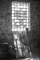 OF-Ensaio-AnaFlavia-300 (Objetivo Fotografia) Tags: friends light luz window girl mom ensaio photography ana model dress wind photos sister adolescente mulher makeup modelo pôrdosol diversão fotos guria janela alegria dust amigas dança figuras mãe jovem vestido claudinha giro vento selfie pneus debutante fábrica duda irmã fotografias whitedress poeira ensaiofotográfico feminino flavinha construção sorrisos arquiteta fábricaabandonada mariaeduarda girar luzesombra shadowsandhighlights olhosclaros anaflávia vestidobranco ensaiofeminino felipemanfroi eduardostoll cabelossoltos objetivofotografia vestidodedebut anacláudiabrevian