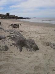 Cuchilla Alta. Febrero, 2016 ( fOto) Tags: sea costa praia beach uruguay coast mar sand mare areia samsung playa arena galaxy uruguai canelones cuchilla cuchillaalta xcover xcover2 claudiocigliutti