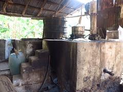 IMG_7959 (alexandre.vingtier) Tags: haiti cap rum nord rhum haitien clairin