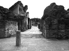 Itlica (Sevilla) (pbernalmac) Tags: roman romanos itlica