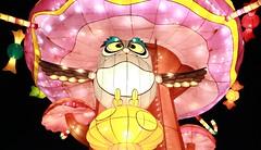 2016 Taiwan Lantern Festival, Taoyuan, Taiwan (My View, My Life) Tags: light sunset red sun flower color animal festival night dark monkey lily shot lotus dragonfly bokeh low year taiwan chinesenewyear frog trail lantern wish lovely taoyuan brilliant 天燈 燈籠 燈會 元宵節 2016