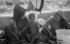 Three generations . . . Pushkar-20151121-09.11.28 - 03538 (Swaranjeet) Tags: life november portrait people india female indian ethnic pushkar rajasthan mela rajasthani 2015 camelfair animalfair