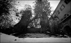 the gate (Roberto Messina photography) Tags: italy mars 6x6 film monochrome analog 2000 pinhole analogue zero asti 2016