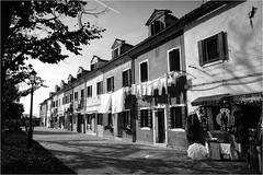 141101 burano 502 (# andrea mometti | photographia) Tags: venezia colori burano merletti