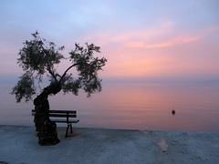 Avondrust (Merodema) Tags: sea sky rose bench meer view bank zee uitzicht avond lucht bankje avondstemming rustig sereen kalm meresblick