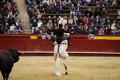 _DSC1173 (Copy) (chris30300) Tags: toros cartagena corrida ventura valence fallas vicens rejon