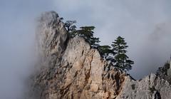 "Viewpoint ""Lost world"" (Luck-o-matic) Tags: trees mountains crimea горы крым облака хмарь"