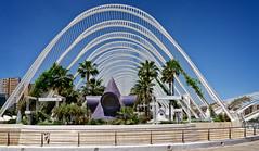Curves (Tigra K) Tags: city travel roof tree valencia architecture garden circle spain es lattice valncia 2015 comunidadvalenciana