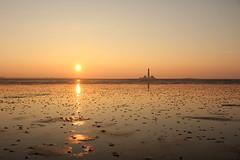 Westerhever Revival (**MIKA**) Tags: lighthouse watt leuchtturm husum wattenmeer waddensea wattwurm westerhever eiderstedt schutzstation