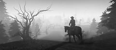 Ghost Town (Skyline*) Tags: blood call bound juarez