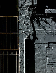 Black Power (stephenbryan825) Tags: white black wall contrast liverpool buildings alley shadows graphic details abstracts minimalist selects erosionrustpaint
