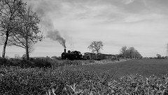 Branch Traffic. (Duck 1966) Tags: trees train goods steam locomotive wagons gcr jinty mountsorrell timelineevents