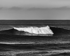 Portrait of a Wave (John Westrock) Tags: ocean blackandwhite seascape water wave pacificnorthwest washingtonstate oceanshores canonef100400mmf4556lisusm canoneos5dmarkiii
