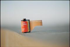 SGF Vision Cinema Pro 100T (Lszl K.) Tags: winter light sunset cinema color film by rollei 50mm nikon gates films milano 14 vision dev pro epson nikkor six fa ais weak v550 sgf c41 colorfilm colornegative pfg 100t cn200 sixgatesfilms