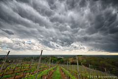 Ominous sky (beppeverge) Tags: sky storm clouds nuvole cloudy vineyards vigneti beppeverge