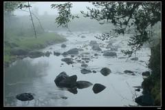 DP1U6629 (c0466art) Tags: light beautiful grass fog creek canon landscape scenery atmosphere mysterious land 1dx c0466art