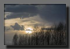 CHOPERA y SOL III (Juan J. Marqus) Tags: sol nubes nwn chopos