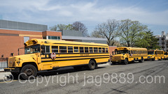 School Buses, George Washington School, Edgewater, New Jersey (jag9889) Tags: auto school usa bus car newjersey automobile unitedstates outdoor unitedstatesofamerica nj transportation vehicle schoolbus edgewater gardenstate 2016 bergencounty 07020 zip07020 undercliffavenue jag9889 20160421