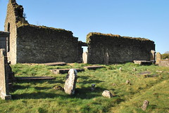 ballinasloe_144 (HomicidalSociopath) Tags: ireland cemetery architecture spring nikon crosses april ballinasloe d60