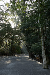 20160318 Ise Jingu 7 (BONGURI) Tags: nikon shrine cosina jp   ise  mie jingu    naiku  isejingu  koutaijingu  amaterasimasusumeoomikami   tenshokoutaijingu  sintoshrine d3s cosinavoigtlnderultron40mmf2sl2naspherical