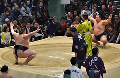 日馬富士 画像13