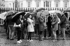 If you look behind you... (sasastro) Tags: people rain mono blackwhite candid 28mm streetphotography umbrellas cambridgeuk smcpentaxa28mmf28 pentaxk5iis