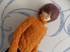 New sweater.  Autumn leaves :) (awsed1991) Tags: dave sweater bjd leekeworld