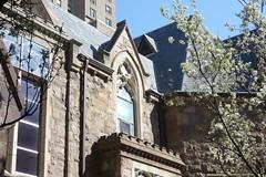 Trinity Church, 22nd Street, Philadelphia (neil.gilmour) Tags: tree philadelphia colors cherry outdoors spring pennsylvania bluesky trinitychurch spruce