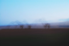 (nic lawrance) Tags: longexposure blue trees light sky abstract blur dark landscape shadows purple outdoor fade