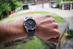 Beautiful Festina watch (Andrija Zecevic Photography) Tags: detail canon lens eos watches bokeh sparkle kit 1855mm elegance festina 700d bokehmonster bokehphotography beyondbokeh