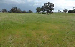 Lot 8, Amaroo Road, Borenore NSW