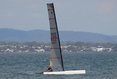 P1010204 (LoxPix2) Tags: boat sailing brisbane catamaran lox aclass no755 loxpix boyermarkiv