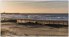 premires vagues (Paloudan) Tags: sunrise vagues plage stesmariesdelamer matin camargue leversoleil
