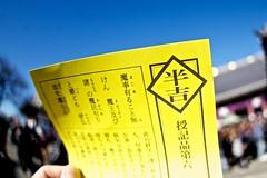 """Hatsumde """"Ikegami Honmon-ji"""" (xio_olx) Tags: ikegamihonmonji sigma15mmf28exdgdiagonalfisheye"""