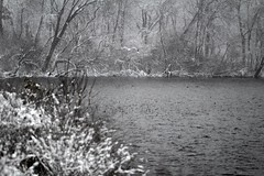 Winter Water (K.G.Hawes) Tags: trees winter white lake snow cold tree water weather wisconsin forest snowflakes grey sticks woods branch snowy branches gray madison stick snowing snowfall monona wintry