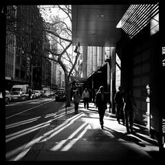 York Street (Albion Harrison-Naish) Tags: sydney streetphotography australia newsouthwales unedited iphone mobilephotography iphoneography sydneystreetphotography hipstamatic aodlxfilm iphone5s lowylens albionharrisonnaish