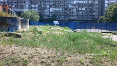 The basketball court and Small park in block 23 Residence, New Belgrade, Belgrade, Serbia, July 2015; Parki u bloku 23 stambeno naselje, Novi Beograd, Beograd, Srbija, jul 2015, godine. (Milan Milan Milan) Tags: park new july block 23 belgrade jul mali residence beograd novi blok 2015 blok23  igraliste    parki igralite decje block23 naselje  stambeno decije deje deije 23